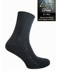 Демисезонные мужские Шкарпетки «Demi» Строка